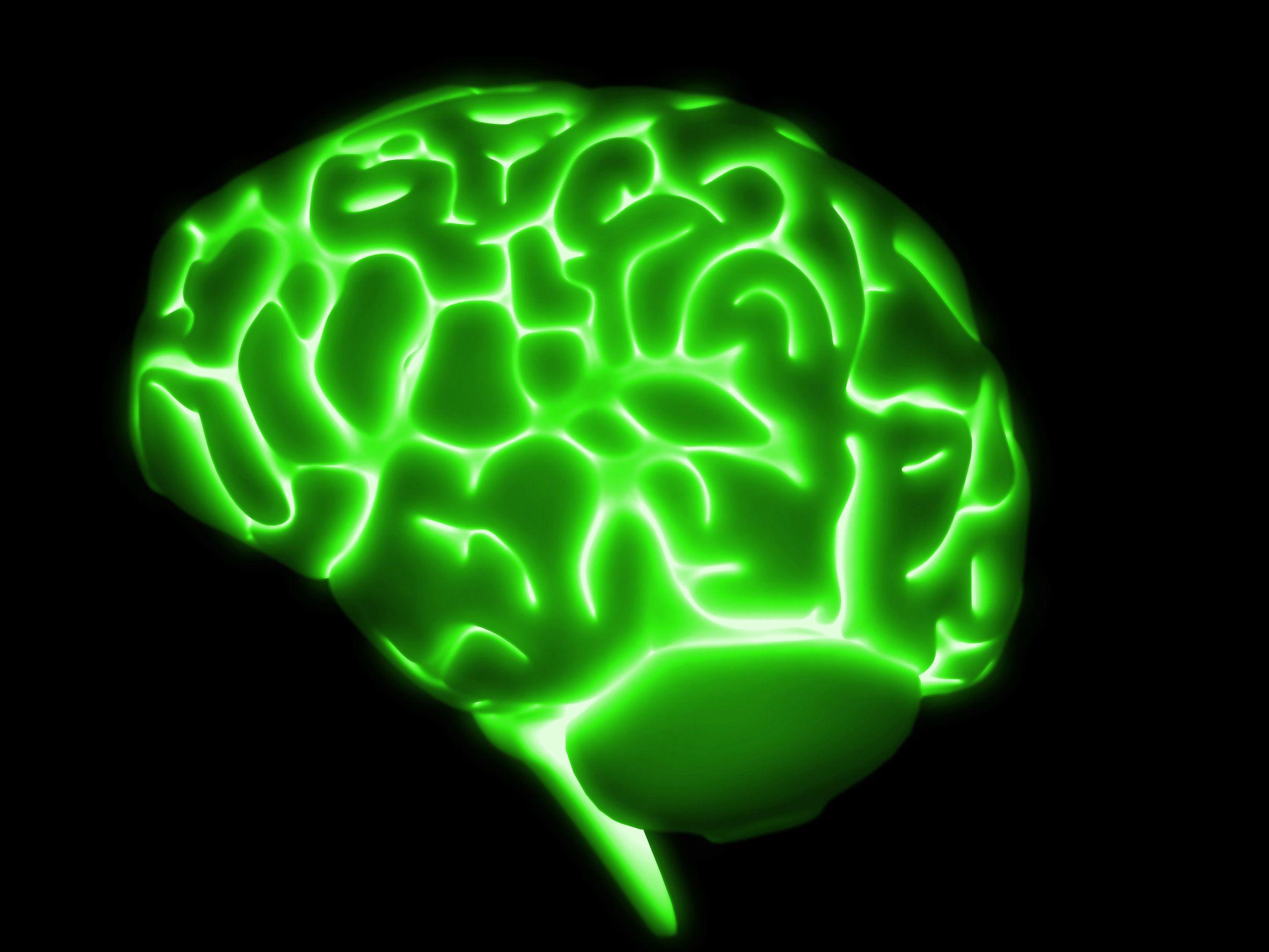 green brain your brain is a superpower green brain red brain orange brain